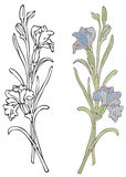 Blue Iris. Hand-drawn in loose style with soft colors. Outlines and color on separate layers, global colors used for easy change Stock Images