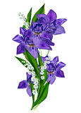 Blue iris flower Royalty Free Stock Photos