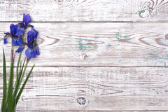 Blue iris flowers on wooden table. Top view, copy space. Stock Image