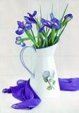 Blue irises. Still life with a beautiful blue irises Stock Images