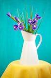 Blue irises. Still life with a beautiful blue irises Stock Image