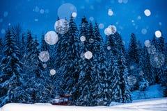 Blue( ish) sneeuwbollen royalty-vrije stock afbeelding