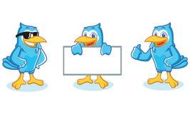 Blue Jay mascot happy Royalty Free Stock Images