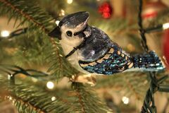Blue Jay ornament Royalty Free Stock Image