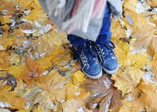 Blue kids boots on the leaves with snow Royalty Free Stock Photos