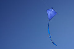 Blue Kite. In clear blue sky stock image