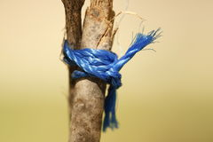 Blue knot Royalty Free Stock Images