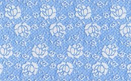 Blue lace. With white flowers Stock Images