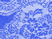 Blue lace on white, detail, floral background Stock Image