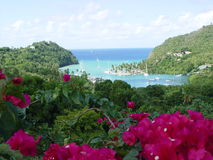 Blue Lagoon. Photo of a bay on a tropical island with lush rain forest surrounding.  Foreground flowers frame the lower portion of this resort bay Stock Photo