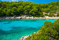 Blue lagoon in Adriatic Sea. On Korchula island of Croatia coastline Royalty Free Stock Photography