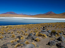 Blue lagoon of Altiplano in Bolivia Royalty Free Stock Images
