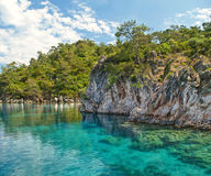 Blue lagoon near rocky tree and plant covered cliff Royalty Free Stock Photography