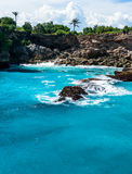 Blue lagoon with palms growing on the cliff Royalty Free Stock Photography