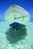 The  blue lagoon relax and boat   of sian kaan in mexico Royalty Free Stock Photo
