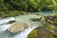 Blue Lagoon and Rio Celeste. The cerulean blue waters of the 'Blue Lagoon' on the Rio Celeste in Volcan Tenorio National Park, Costa Rica Royalty Free Stock Photo