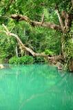 Blue lagoon in Vang Vieng, Laos. Blue lagoon is wonderful clear stream outside the Tham Phu Kham cave Stock Photos