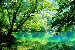 Blue lake. Stock Photos