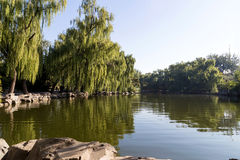 Blue lake on a clear summer day (park in central Beijing, China) Stock Image