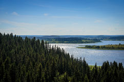 Blue lake and dark green forest Stock Image