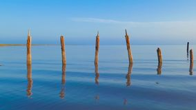 Blue lake in early morning. Landscape of blue lake with destroyed wooden pier in early morning stock footage