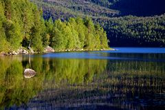 Blue lake, green trees. Stock Images