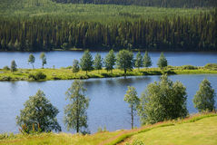 Blue lake with an island in the middle of the taiga forest Royalty Free Stock Photos