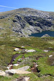 Blue Lake, Kosciuszko National Park, NSW Australia. Summer day at Blue Lake in Kosciuszko National Park NSW Australia with foreground flowers and mountain stream Stock Photo