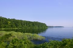 Blue lake landscape in a green Texas forest view Stock Photography
