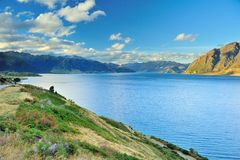 Blue Lake with Mountain Range and Blue Sky in South Island, New Stock Photography