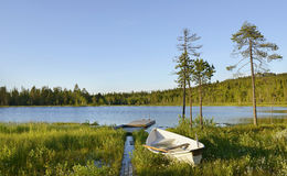 Blue Lake. Northern Finland Royalty Free Stock Images