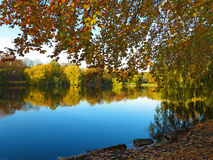 Blue lake in a park in autumn Stock Photo