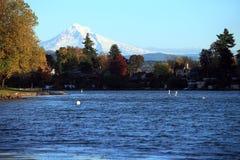 Blue lake park & mt. Hood. Stock Photography