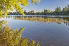 Blue Lake park at sunset Oregon. Royalty Free Stock Photo