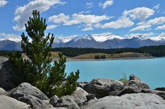 Blue Lake Pukaki New Zealand. Magic scenery stock photography