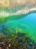 Blue lake Russia Kabardino-Balkaria Royalty Free Stock Image