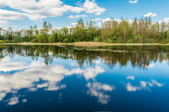 Blue lake, the sky reflects the surface of the water with white clouds, on the horizon a dry reed and the forest. Grows from deciduous and needy tree species stock photo