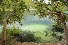 Blue Lake Stradbroke Island Royalty Free Stock Image