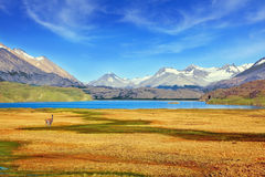 A  blue lake surrounded by snow-capped mountains. Royalty Free Stock Photo