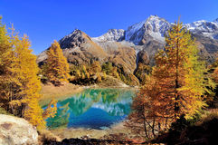 Blue lake in Switzerland Royalty Free Stock Image