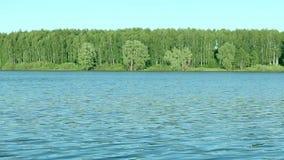 Blue Lake and trees on the horizon. Slider, Full HD stock video