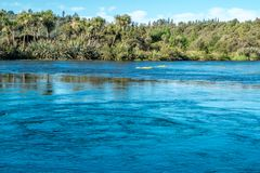 Blue lake and trees on the shore. Nelson area, New Zealand stock photos