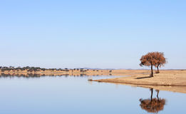 Blue lake in Vale Do Guadiana, Alentejo, Portugal royalty free stock photos