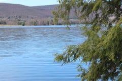 Blue lake Royalty Free Stock Image