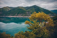 Blue lake and yellow bush in mountains stock images
