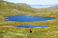 Blue lakes of summer Soroya. Stock Photos
