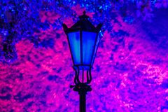 Blue lamp. Blue light lamps in the park on a background of pink leaves royalty free stock photos