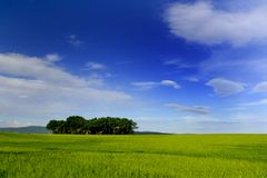 Blue landscape.  Royalty Free Stock Photo