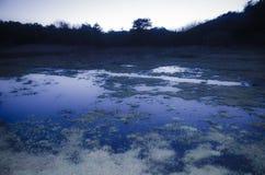 Blue landscape after sundown Royalty Free Stock Photos