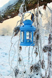 Blue lantern in winter scenery Royalty Free Stock Photography